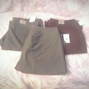 3 pairs limited brand dress pants nwt